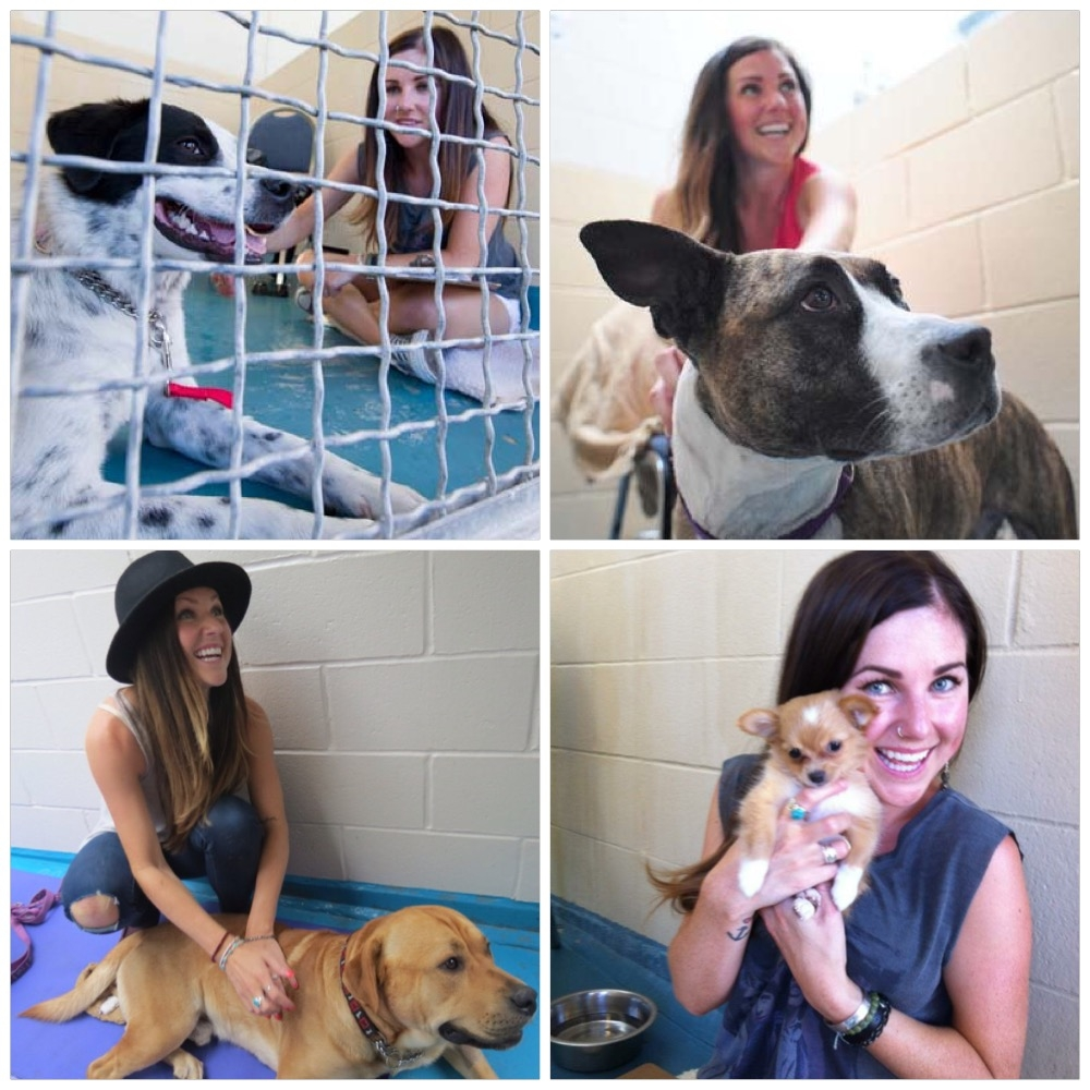 SPCA Kennel Lock-In with Alece & Kimmie
