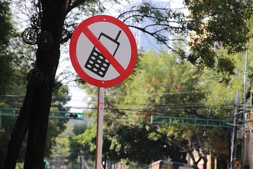 No Cell Phones While Driving