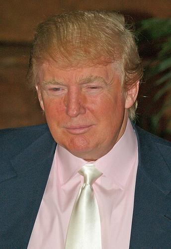 Trump Elected, Davis Wins, Sales Tax Loses