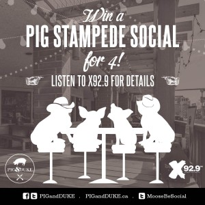 Stampede Social at The Pig & Duke Neighbourhood Pub