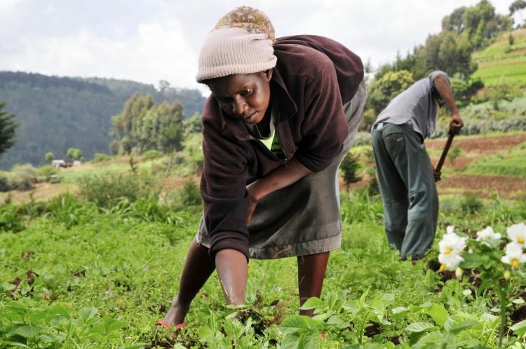 Farmer's Day Nov 4 not public holiday