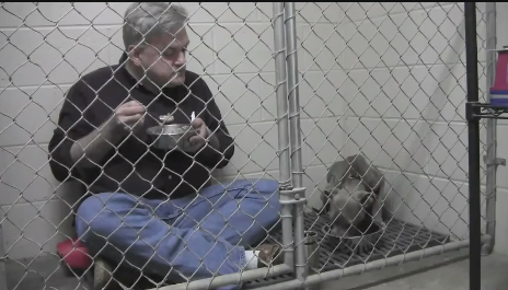 Vet comforts Scared Abused Pup