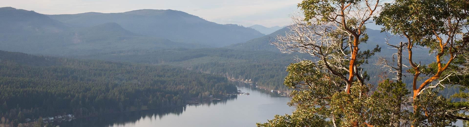 BC Supreme Court orders halt to Shawnigan Soil dumping